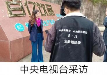 王桂香:从打工妹到董事长,她的西班牙红酒与商界人生。